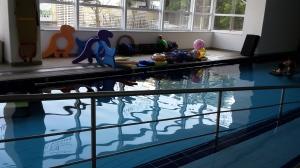 piscina lucy montoro